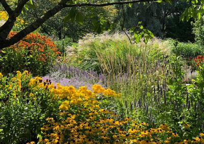 Trädgårdsdesign Grundkurs