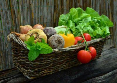 Grönsaksodling för självhushåll